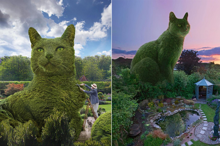 Фотохудожник Ричард Сондерс очень любит своего кота Толли и создает фотоколлажи с его изображением в виде кустов