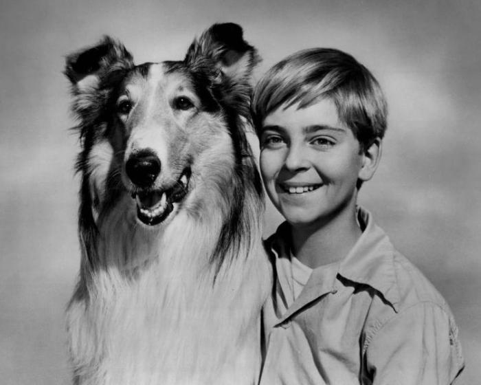 Томми Реттиг с Лесси, ок. 1955 года