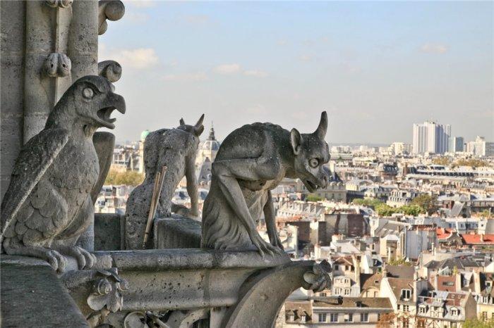 Химеры парижского Собора Богоматери
