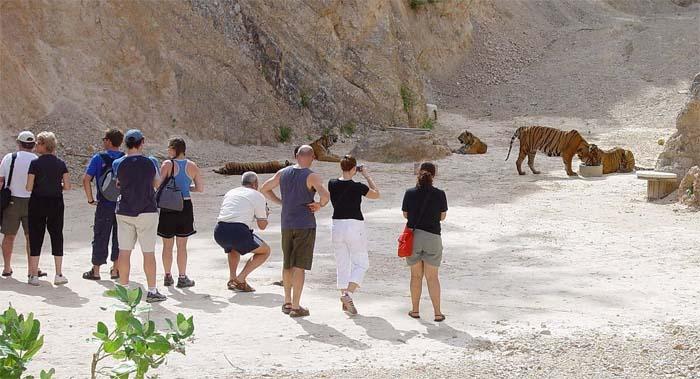 Туристы в Тигрином монастыре