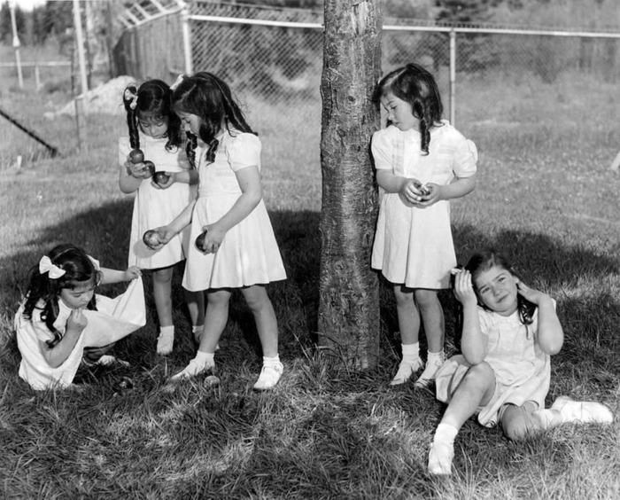 Сестры-пятерняшки жили в настоящем «человеческом зоопарке», за их играми и учебой тайком могли наблюдать туристы