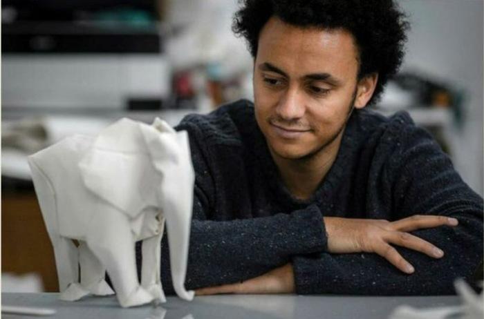 Сифо Мабона – мастер оригами