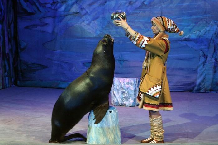 Выступление артистов театра Дурова