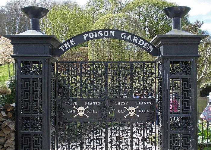 Самый ядовитый сад в мире: Почему старинная резиденция в Англии привлекает туристов