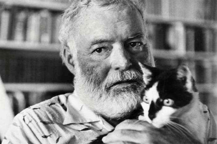 Эрнест Хемингуэй был большим любителем кошек