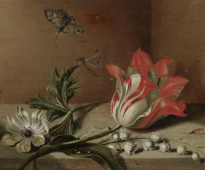 Якоб Маррель «Натюрморт с цветами и насекомыми на деревянном столе»