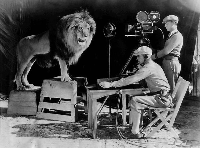 Лев Джеки снимается для заставки киностудии «MGM», 1928 год