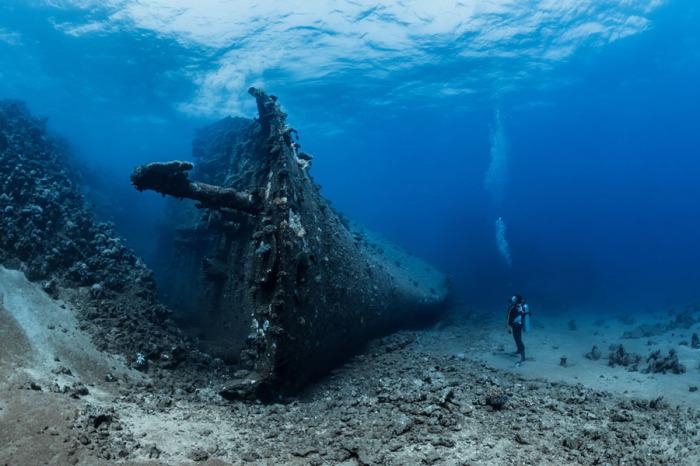 Франц Дабенхофер «Миллион надежд» Кораблекрушение», Почетное упоминание «Ocean Art 2018», категория «Широкоугольная беззеркальная камера»