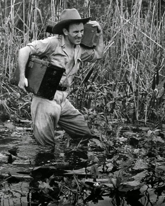 Чарльз Эббетс прославился тем, что ради хорошего снимка мог залезть куда угодно