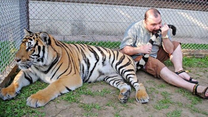 Смерти в зоопарке – постоянный источник пополнения номинантов Дарвиновской премии
