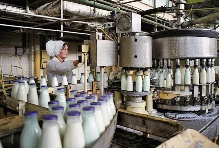 Производство молочной продукции в СССР
