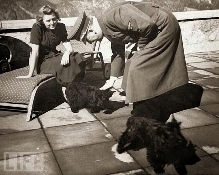 Адольф Гитлер ласкает собак