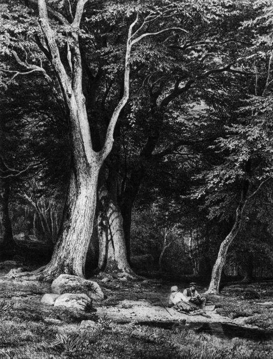 """""""Отдых в лесу"""", 1865г."""