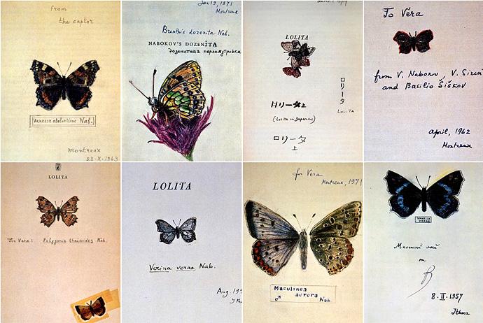 Бабочка - литературная визитка В. Набокова