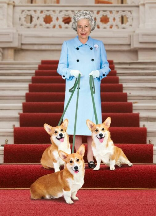 Королева Елизавета II со своими корги. / Фото: www.pinimg.com
