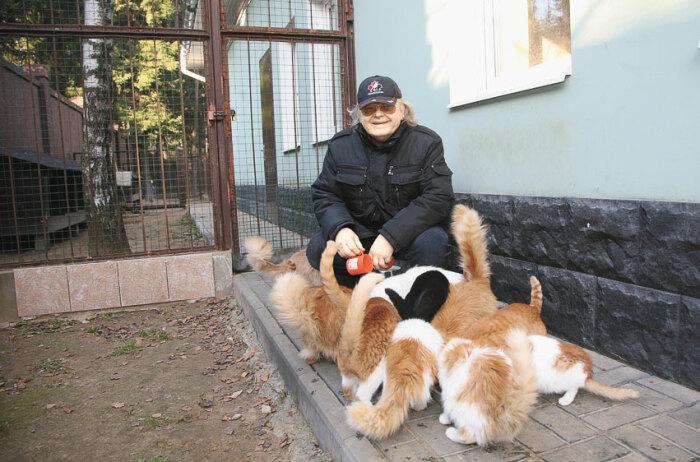 Юрий Антонов и его кошки. / Фото: www.ladymega.ru