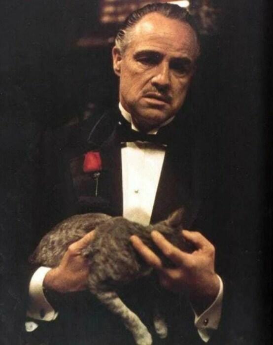 Кадр из фильма «Крестный отец». / Фото: www.yandex.net