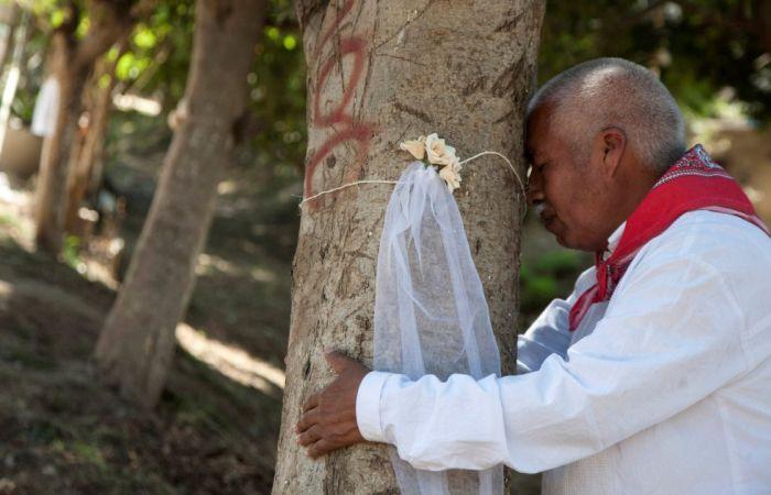 Свадьба с деревом. / Фото: www.epimg.net