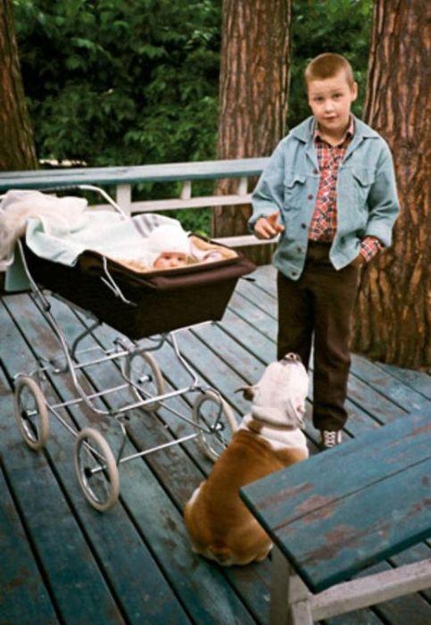 Борис Ливанов со своим младшим братом Колей. / Фото: www.7days.ru