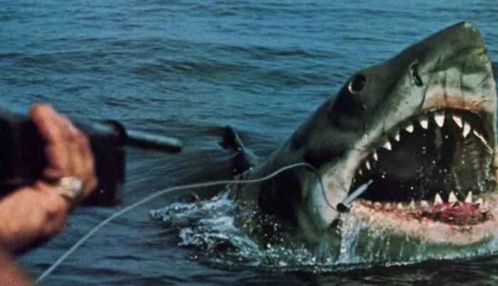 Кадр из фильма «Челюсти». / Фото: www.twimg.com
