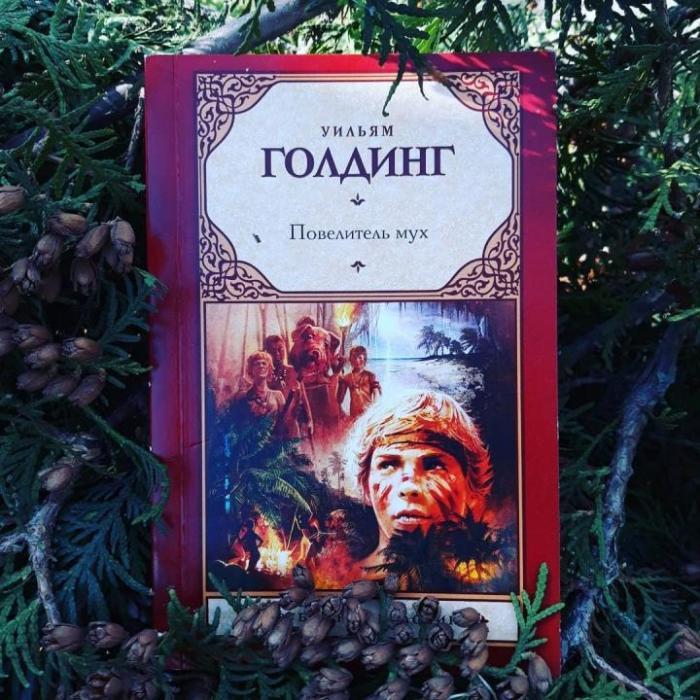Уильям Голдинг, «Повелитель мух». / Фото: www.youla.io
