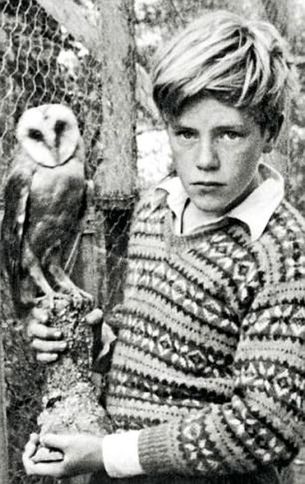 Джеральд Даррелл в детстве. / Фото: www.dailymail.co.uk