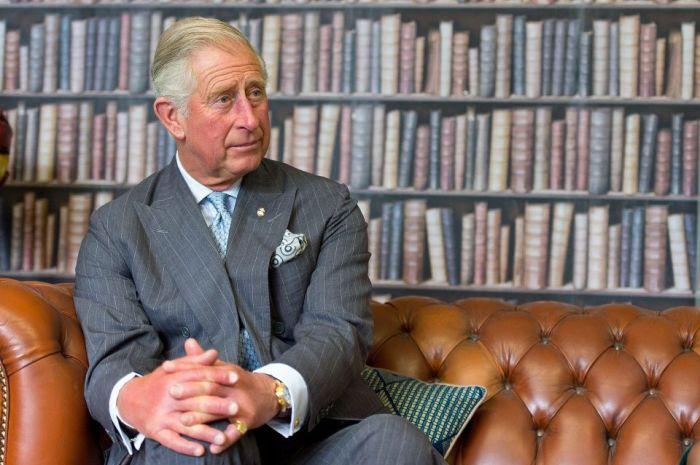 Принц Чарльз. / Фото: www.iplsc.com