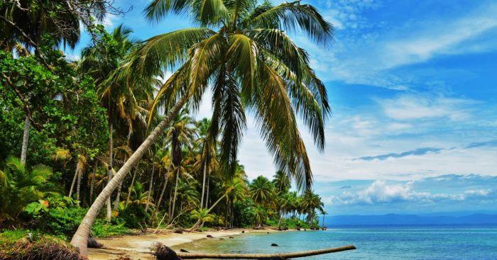 Остров в архипелаге Бокас-дель-Торо - место съёмок первого сезона «Последнего героя». / Фото: www.tsn.ua
