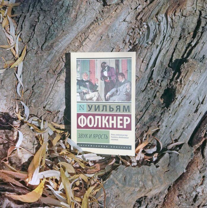 Уильям Фолкнер, «Звук и ярость». / Фото: www.bookgirl.ru