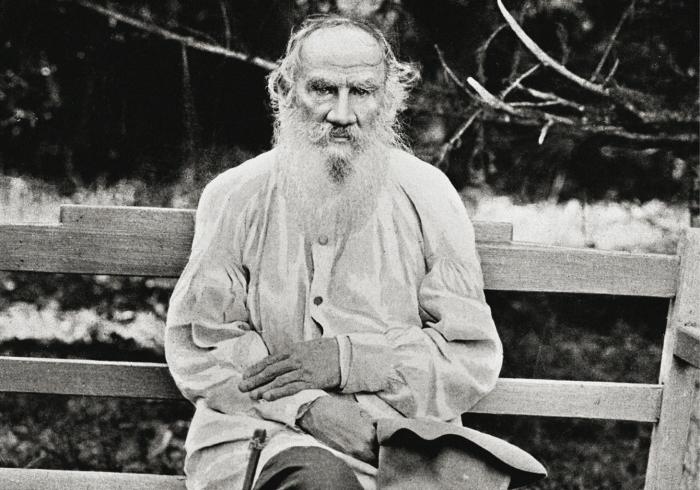 Лев Толстой. / Фото: www.regnum.ru