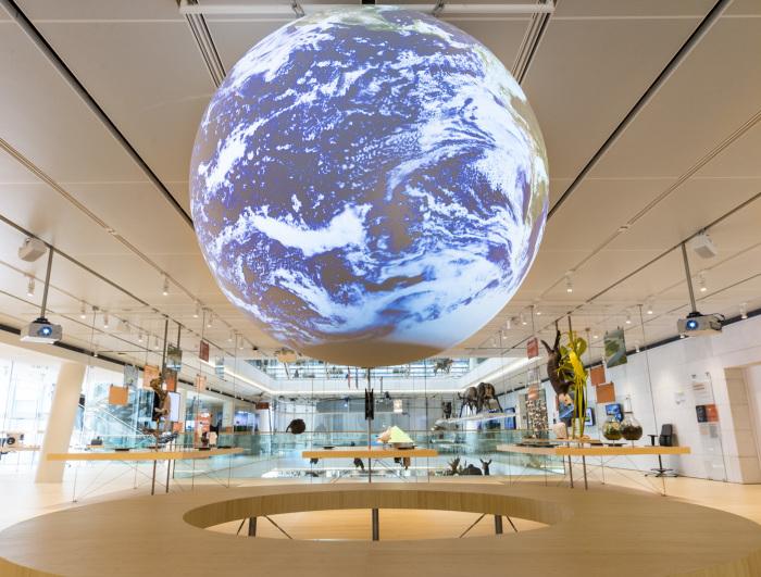 В Музее естественных наук MUSE. / Фото: www.svegliamuseo.com