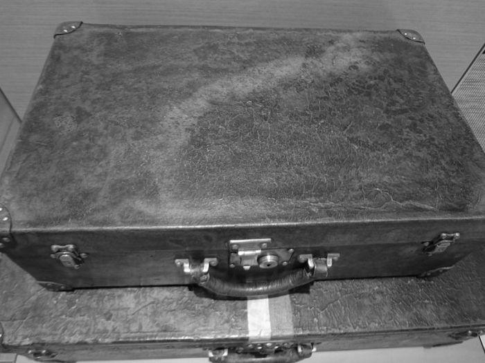 Первые чемоданы Trianon от фирмы Louis Vuitton. / Фото: www.wikipedia.org