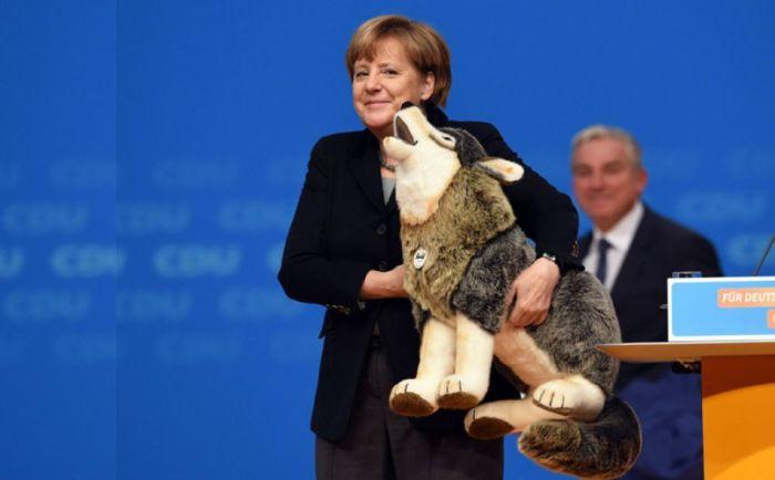 Ангела Меркель. / Фото: www.myseldon.com