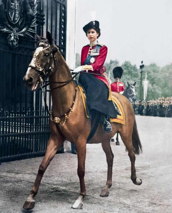 Елизавета II. / Фото: www.twimg.com