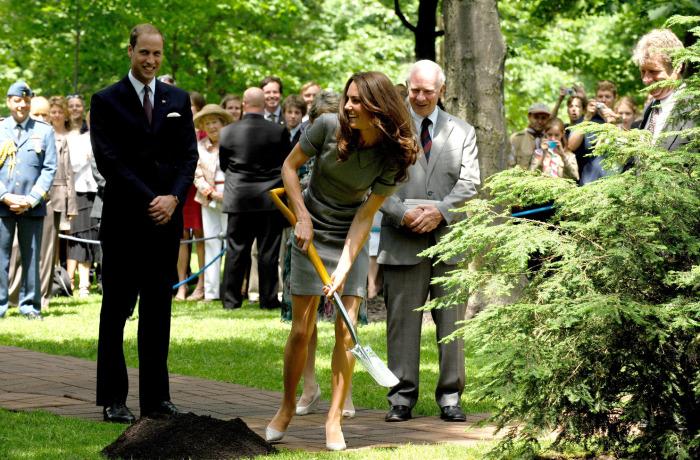Принц Уильям, Кейт Миддлтон и принц Чарльз. / Фото: www.bagnet.org