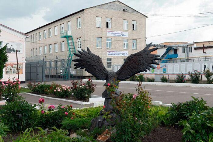 ИК-4 в Алексеевке Белгородской области. / Фото: www.rbc.ru