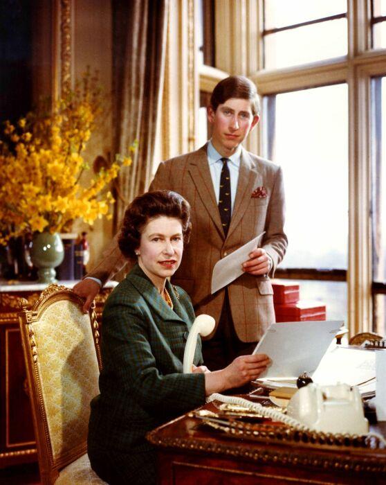 Кадр из фильма Royal Family. / Фото: www.dailymail.co.uk