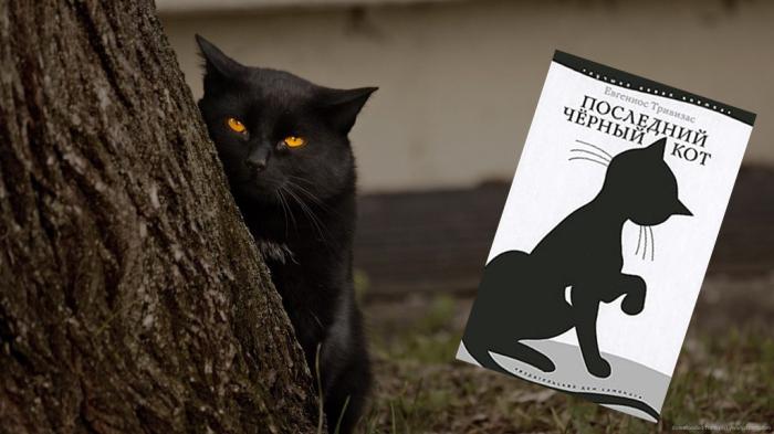 «Последний черный кот», Евгениос Тривизас.