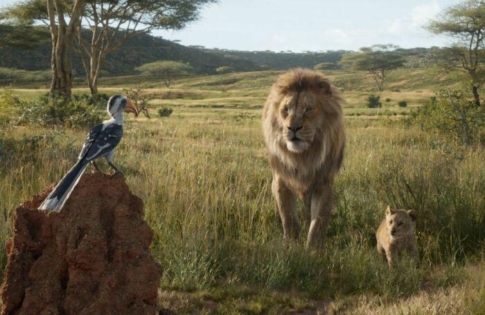Кадр из мультфильма «Король Лев». / Фото: www.kinopoisk.ru