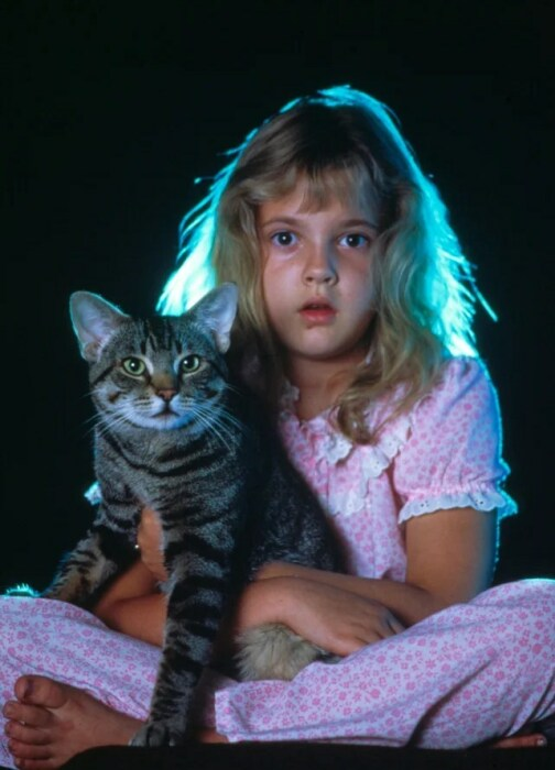 Кадр из фильма «Кошачий глаз». / Фото: www.kinopoisk.ru