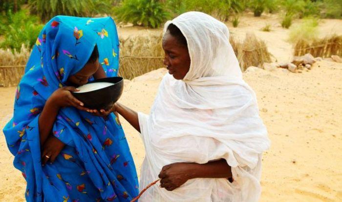 Мавританских девочек пытаются закормить, чтобы выдать замуж. / Фото: www.clutch.net.ua