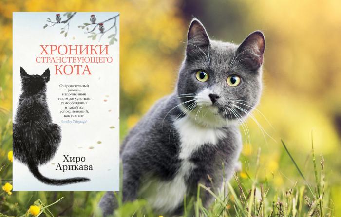 «Хроники странствующего кота», Хиро Арикава.