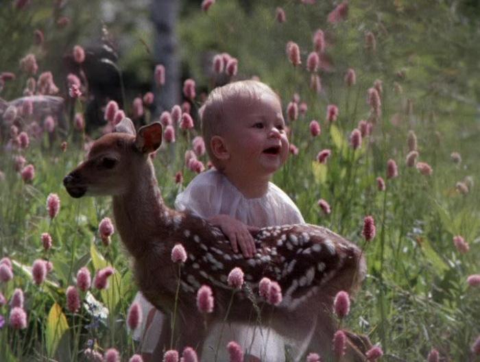 Платон, сын Галины Беляевой, в фильме «Детство Бемби». / Фото: www.fenixclub.com
