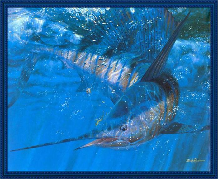 Mark Susinno (Марк Сузинно), Рыбы, подводный мир