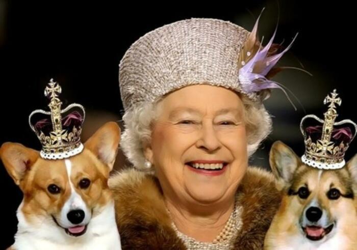 Королева Елизавета II./Фото источник:joinfo.com