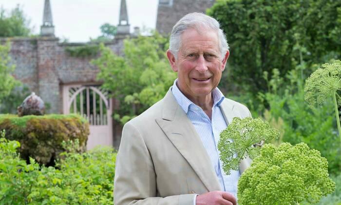 Чарльз, принц Уэльский./Фото источник:hellomagazine.com