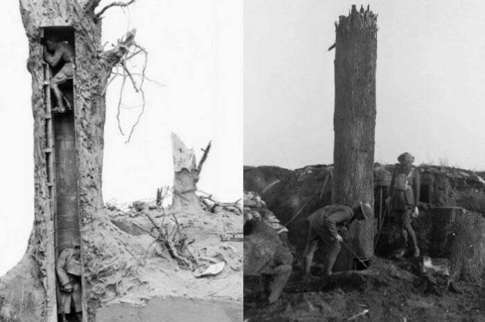 Иногда сооружали даже поддельные деревья.