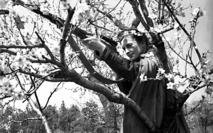 В общей сложности на фронте Людмила провела около одного года.