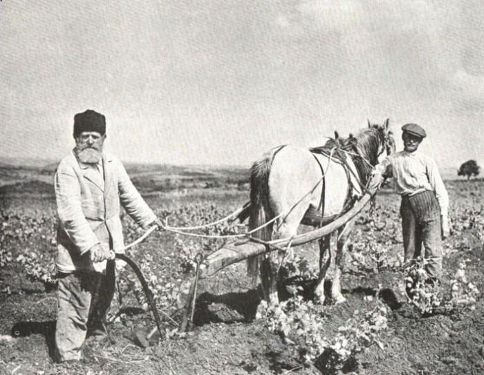 Главными хозяевами земли всегда были крестьяне.