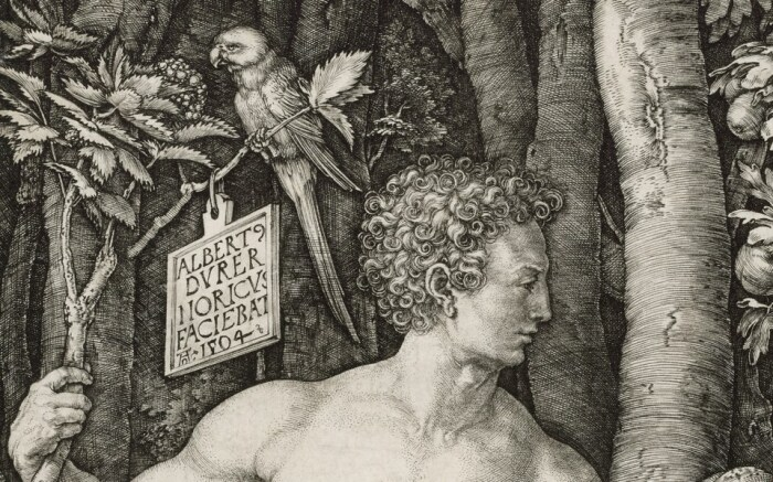 Данная работа - гордость Дюрера, поэтому он указал свое авторство в центре гравюры